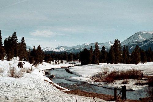 Hope Valley near Lake Tahoe  2005_011.jpg