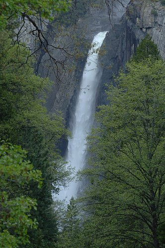 Lower Yosemite Falls  Yosemite 5-10-08 3_100 (2).jpg
