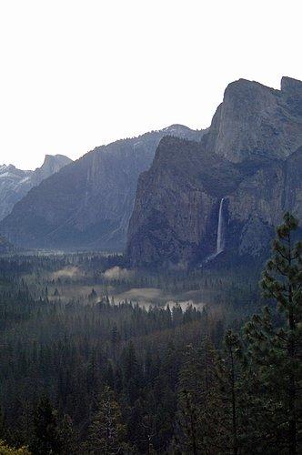 Misty sunrise in Yosemite Valley 4-21-07_007.jpg