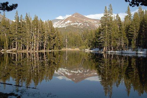 Mount Gibbs - Yosemite 5-19-07_178 (2).jpg
