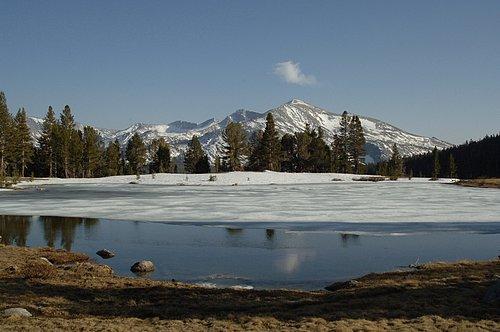 Mt Dana Tioga Pass - Yosemite NP 5-19-07_173.jpg