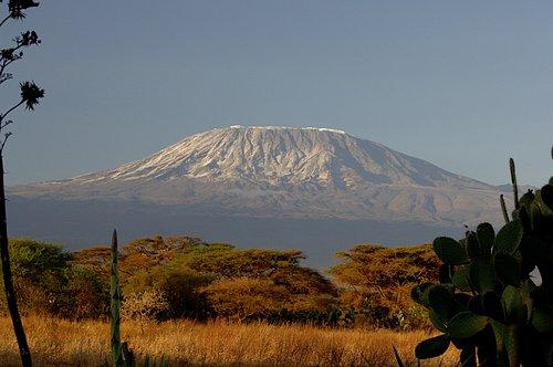 Mt Kilimanjaro - Amboseli NP 10-10-07_019.jpg