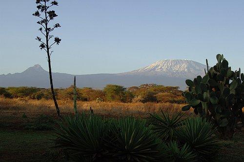 Mt Kilimanjaro and Mt Mawenzie - Amboseli NP 10-10-07_008.jpg