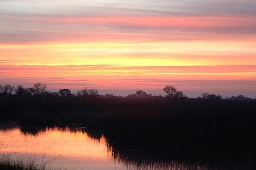 Sunrise - San Luis NWF - Los Banos Ca 3-25-07_405.jpg