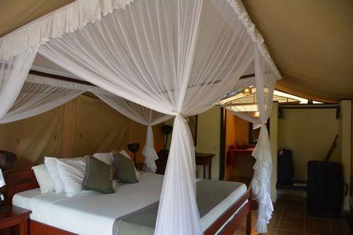 Voyager Ziwani Lodge - Tsavo West NP Kenya D5200 269 11-12-14.jpg