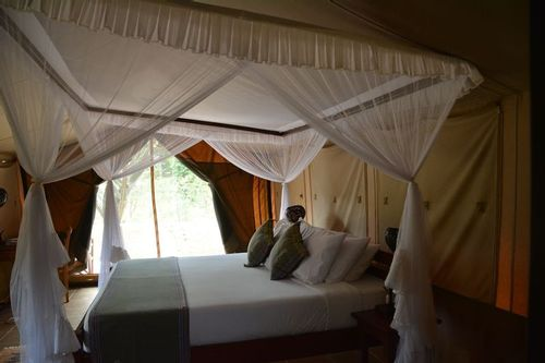 Voyager Ziwani Lodge - Tsavo West NP Kenya D5200 272 11-12-14.jpg