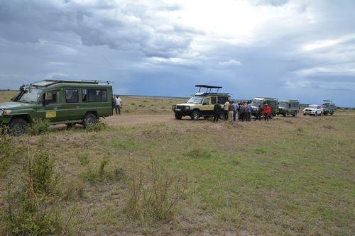 Calvary comes to the rescue - Serengeti National Park - Tanzania D5200 338 11-15-14.jpg