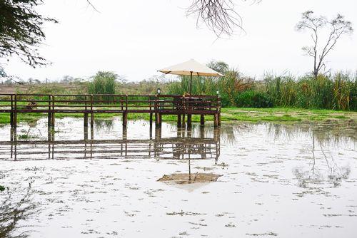 Hippo Pond at Voyager Ziwani Camp - Tsavo NP Tanzania D800 013 11-13-14E.jpg