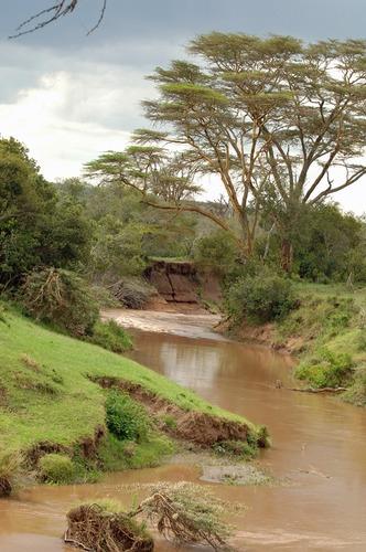 Lach Dera river - Ol Pejeta Conservancy Kenya - D2X2017-10-28-614CE.jpg
