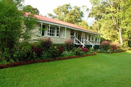 Rondo Retreat Lodge - Kakamega NP Kenya - D2X 2017-10-31-106CE.jpg
