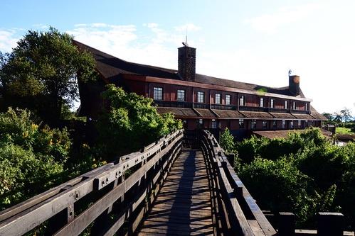The Ark Lodge - Aberdares NP Kenya - D800 2017-10-24-012CE.jpg