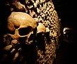 The Catacombs Paris.jpg