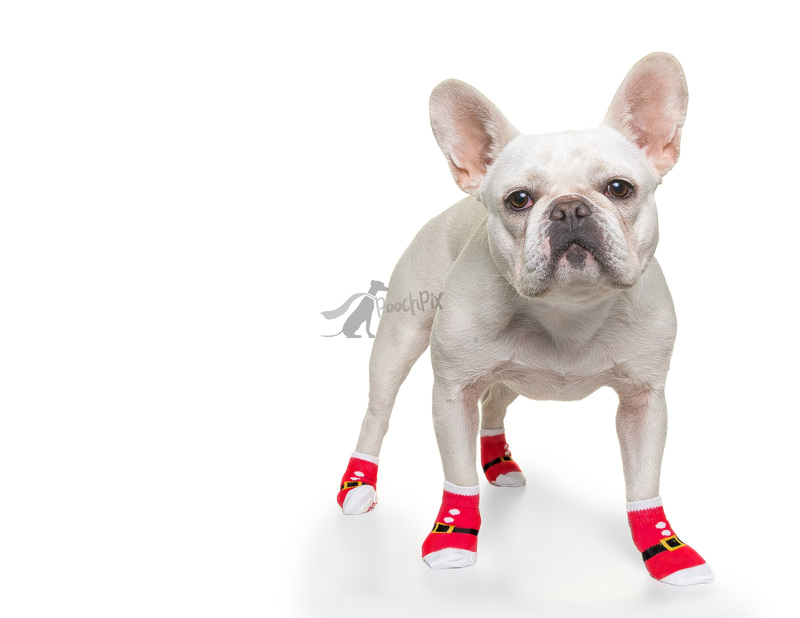 Martha socks wm.jpg