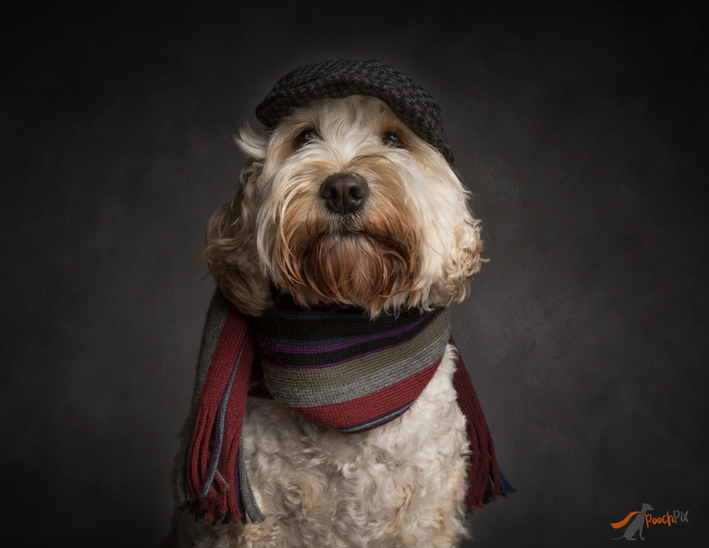 dolly in flat cap and scarf eyes.jpg