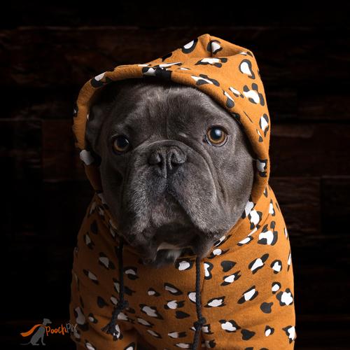 wild child dog hoody wm.jpg