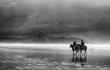 storm-riders-bw.jpg