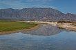 Baja Estuary.jpg