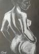 Graceful Back - Female Nude.jpg