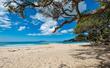 Langs Beach DSCF7091.jpg