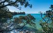 Little Manly Beach DSCF4073.jpg