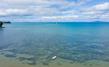 Matakatia Bay Whangaparaoa Hibiscus Coast DJI_0806.jpg