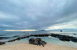 Takapuna beach  4861.jpg