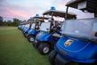 Golf1of5v2.jpg
