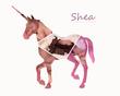 Shelli-Al23.jpg