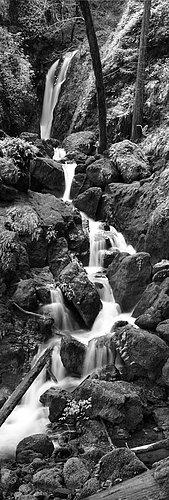 Coast -- Cataract Falls.jpg