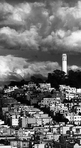 San Francisco--Telegraph Hill Cloud Shadows -- Vertical Panorama.jpg
