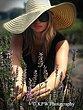 Fashion2_KPW.jpg
