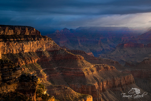 Grand-Canyon-Stormy-Sunrise-Photo-GCT_3819.jpg
