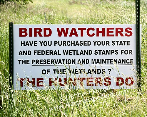 Bird Watcher Sign - SIG-0013.jpg