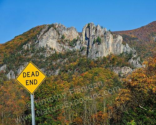 Dead End - SIG-0012.jpg