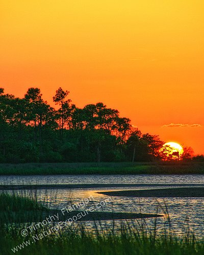 Florida Sunset - SRS-0013.jpg