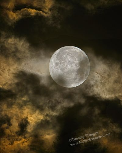 Full Moon - SRS-0017.jpg