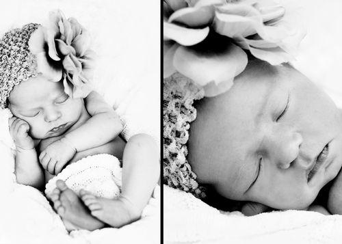 Ellie newborn.jpg