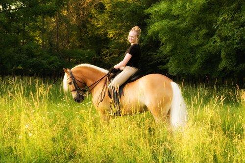 Bailey Baughan Horse - Williamston HS.jpg