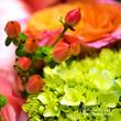 Summer Flowers.jpg