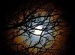 fullmoon_corona_180120141.jpg
