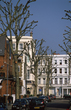 Barons Court Trees 13A 851.jpg