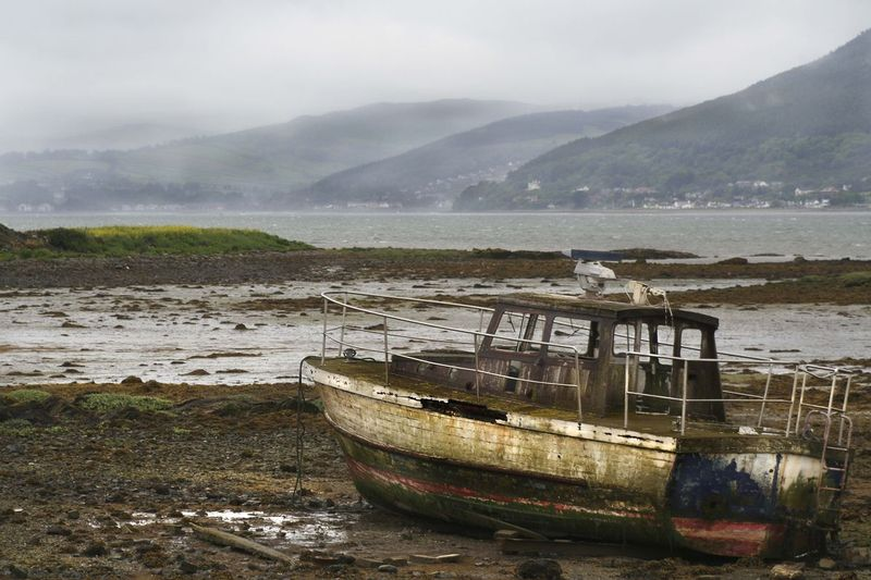 Ship wreck in Carlingford.jpg