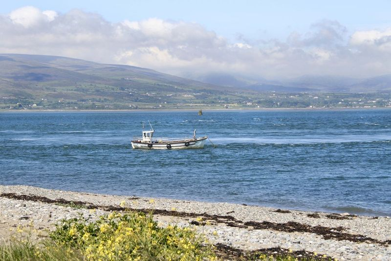 View from Greenore toward Rostrevor.jpg