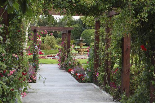 Carrickdale-Gardens-Dundalk.jpg