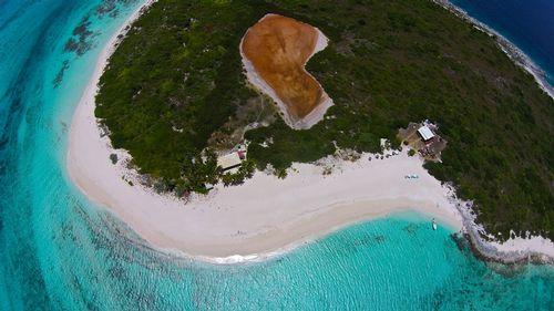Prickly Pear-3 (Anguilla).jpg