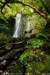Matai Falls.jpg