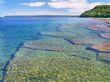 Bruce Peninsula Shoreline.jpg
