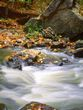 Rocks and Rapids.jpg