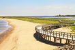 Beach and Boardwalk at Bouctouche.jpg