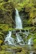 Dickson Falls Fundy National Park.jpg